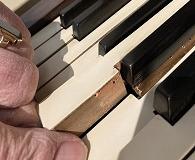Klavier houtworm